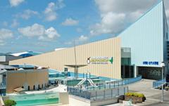 Shima Marine Land Aquarium